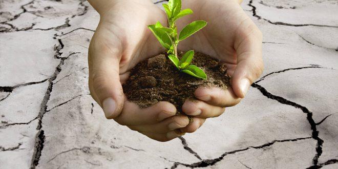 Tecnologías químicas para el desarrollo sostenible