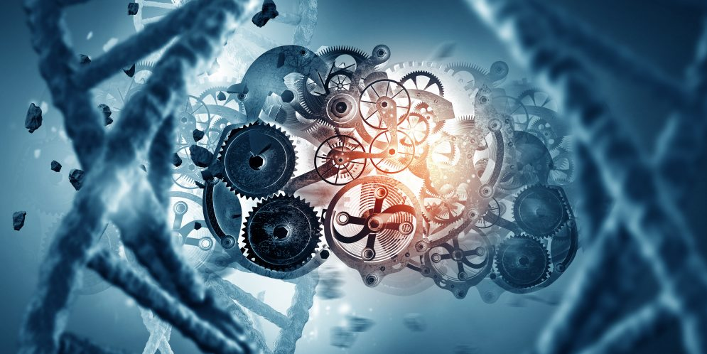Juegos paradójicos, motores microscópicos y la flecha del tiempo